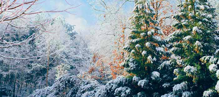 winter is a wonderful time to enjoy shopping, dining, and the wonderful sights in Glenside, Montgomery County PA